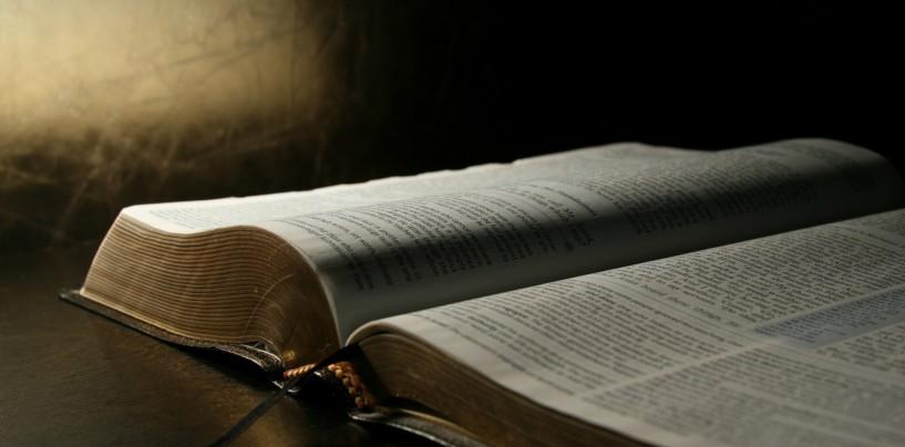 Salmos: conheça esta forma de orar e meditar
